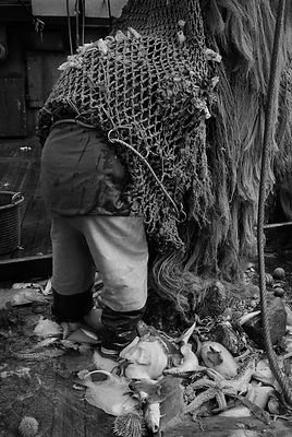 Fisherman aboard the Newlyn beam trawler 'Aaltje Adriaantje'.