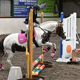 15/03/2020 - Class 2 - Unaffiliated showjumping - Brook Farm training centre - UK