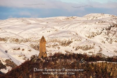 Image - The Wallace Monument in winter, Stirling
