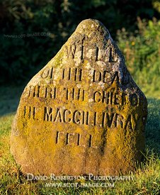 Image - Well of the Dead, Culloden battlefield