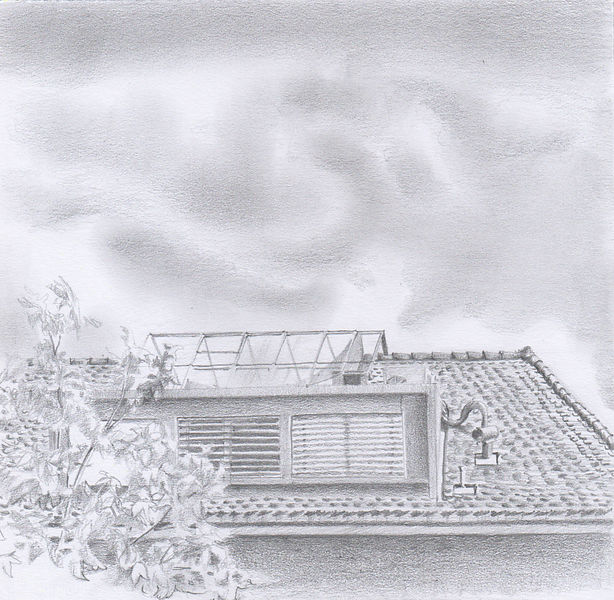 (Roof)