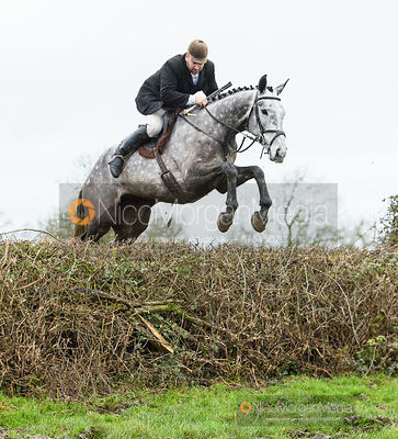 Russell Nearn jumping a hedge near Leicester Lane. The Cottesmore and Fernie Hunts at Hill Top 10/12