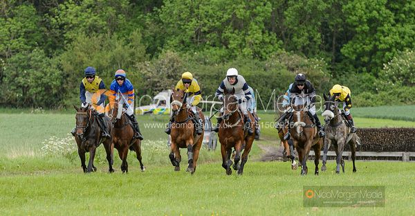 Race 7 - Open Maiden - The Fitzwilliam at Dingley