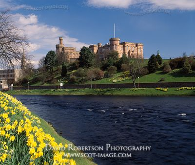 Image - Inverness Castle, River Ness, Scotland, Spring daffodils