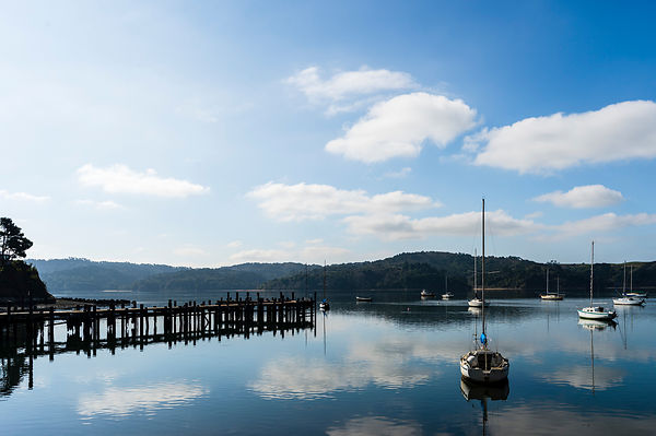 Tomales Bay, Californie, USA.