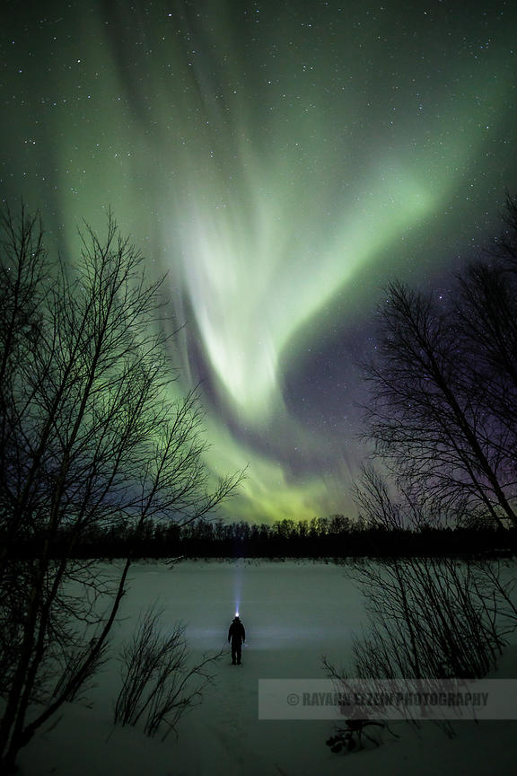 Man's silhouette with headlamp standing on the frozen Kaamanen river under the northern lights