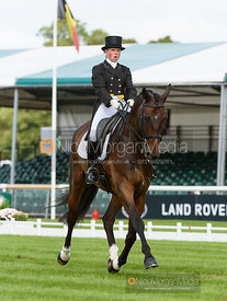 Rosalind Canter and  ALLSTAR B - dressage - Land Rover Burghley Horse Trials 2016