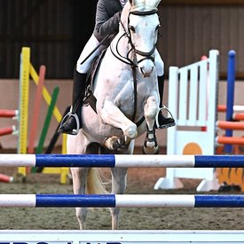15/03/2020 - Class 13 - Unaffiliated showjumping - Brook Farm training centre - UK