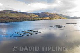 Aerial view of salmon fish farm on Loch Linnhe, Great Glen, Western Highlands Scotland