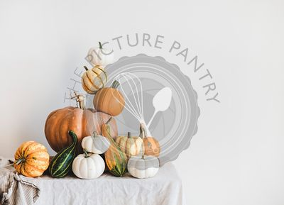 Pumpkins for Halloween or Thanksgiving Day holiday decoration, copy space