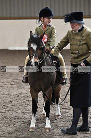 In hand showing. Stapleford Abbotts. United Kingdom MANDATORY Credit Garry Bowden/Sport in Pictures - NO UNAUTHORISED USE - 0...