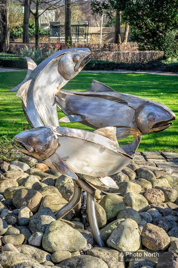 WHALLEY 37A - Three Fishes, Vale Gardens