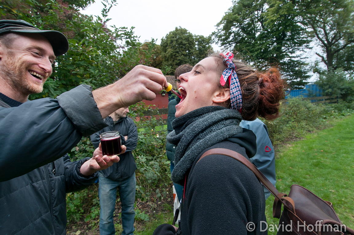 130915 Clissold Foraging 37