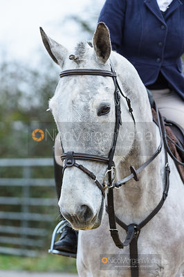 Elle McCoan at the meet. The Belvoir Hunt at Long Clawson 21/1