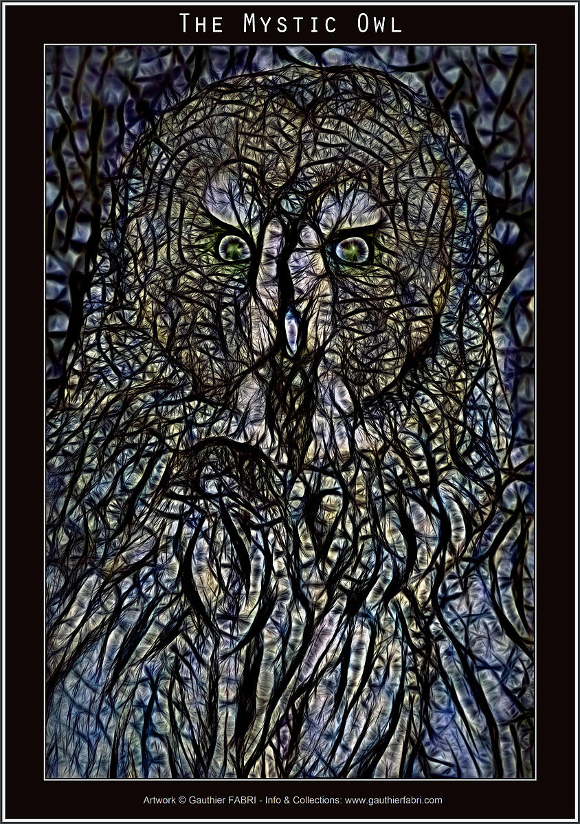 The_Mystic_Owl_WEB
