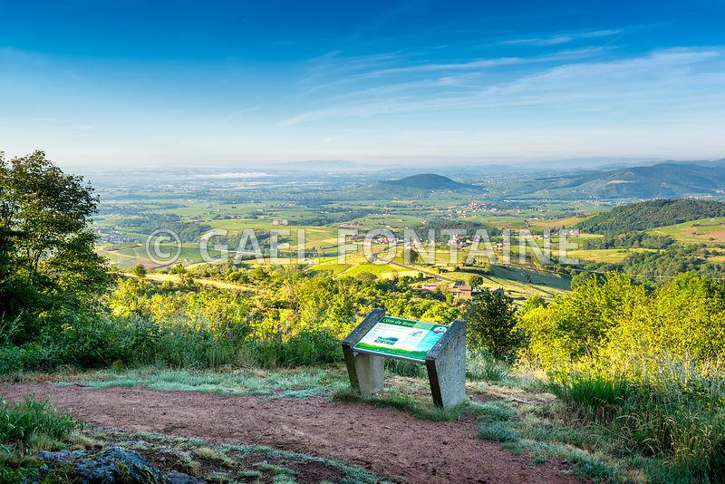 Photos Le Mont Brouilly Et Le Beaujolais Vue Depuis La