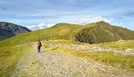 A hiker and their dog walking along a mountain path on a sunny day towards the summit of Hopegill Head In the Lake District, ...