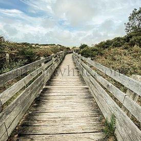 Wooden path over the dunes at Le Touquet, France. The path leads to observatory of the Canche walk