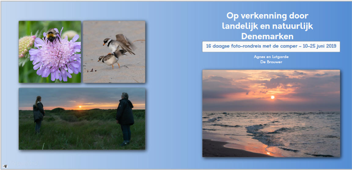 Photobook_Denmark_cover_Nl