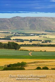 Image - Barley Fields and the Lomond Hills, Scotland