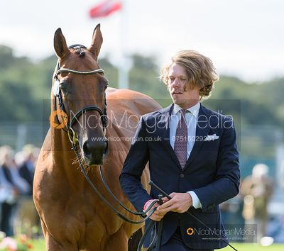 Ludwig Svennerstal and STINGER at the trot up, Land Rover Burghley Horse Trials 2019