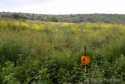 Open fields sown with land mines near the Golan Heights, Israel.