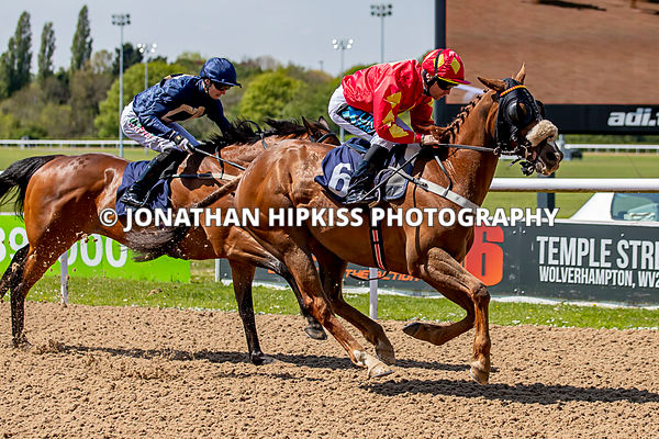 Race 1 - 1.50 winner Celtic Artisan