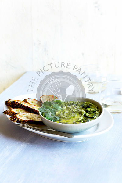 Roasted Jalapeno Cilantro Manchego Pesto with Crostini