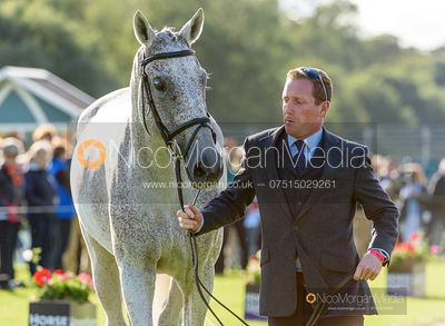 Oliver Townend and BALLAGHMOR CLASS at the trot up, Land Rover Burghley Horse Trials 2019