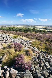 Image - View south from the White Cathertun, near Brechin, Angus, Scotland