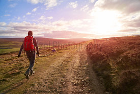 Dog walk across the moors at sunset at Edmundbyers in County Durham.