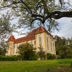 Schloss_Wildbach_in_Austria-4204