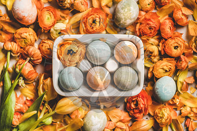 Flat-lay of colorful dyed Easter eggs over orange flower petals