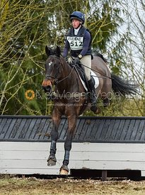 Rosalind Canter and ALLSTAR B - Intermediate Sections - Oasby Horse Trials, March 2018.