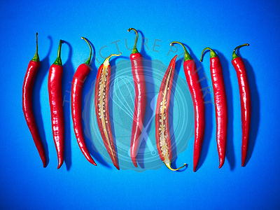 Chillies concept against a blue background