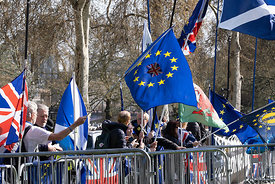 #124681  Brexit demonstrators' flags, College Green opposite the Palace of Westminster.   They demonstrated outside the House...