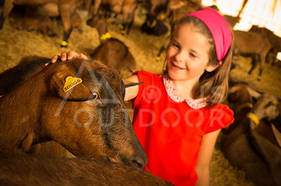 ferme-famille-HD_focus-outdoor-0003