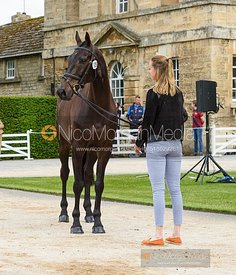Bella Innes Ker and CARTOWN WALLABE at the trot up, Equitrek Bramham Horse Trials 2019