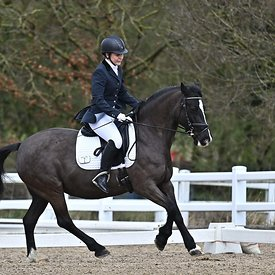 14/03/2020 - Class 6 - Unaffiliated dressage - Brook Farm training centre - UK