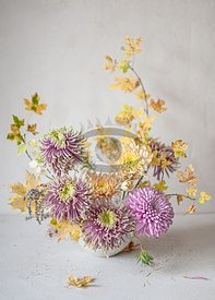 Autumnal Chrysanthemum