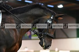 Stapleford Abbotts. United Kingdom. 24 August 2020. Monday evening dressage. MANDATORY Credit Garry Bowden/Sport in Pictures ...