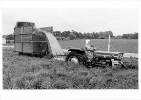 POSTCARD  