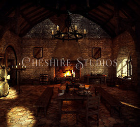 Medieval Castle Kitchen