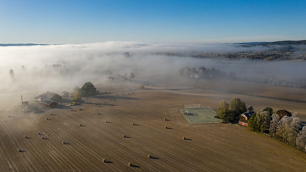 Fog over the fields