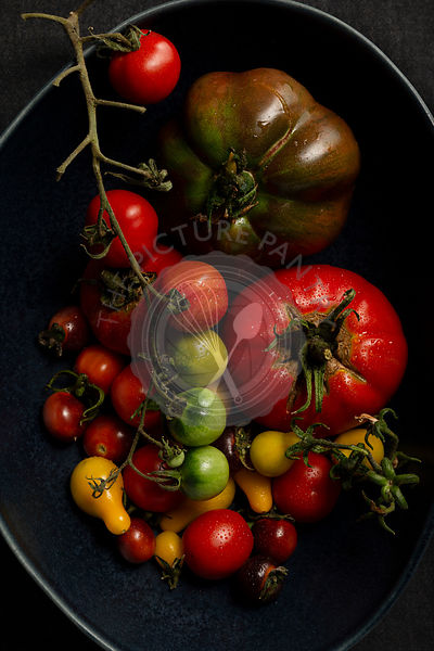 A selection of various heirloom tomatoes in a large, dark blue free form bowl.