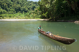 Dugout canoe on Ravo River and forest Nara on Makira (San Cristobal) Solomon Islands, South Pacific