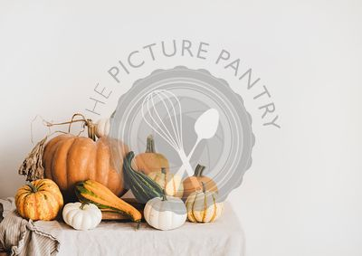 Colorful pumpkins of different shapes and sizes on light tablecloth