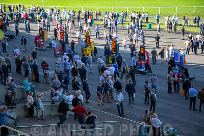 Aniseed_Photo_-_EN_Raceday_2019-206