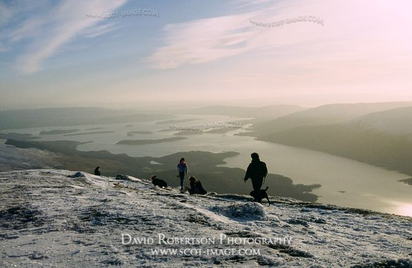Image - Ben Lomond summit in winter, walking