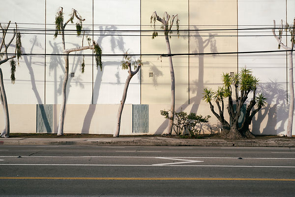 Los Angeles by Christian Werner